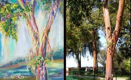 Eucalyptus study