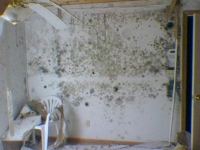 toxic drywall