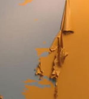 PaintFailure