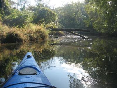 Piscataway Creek
