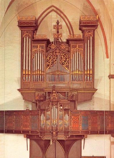 Stellwagen organ