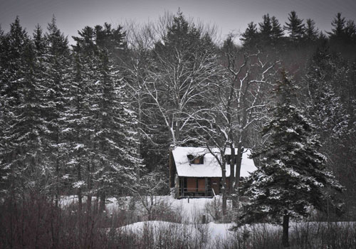 Daisy Turner Cabin