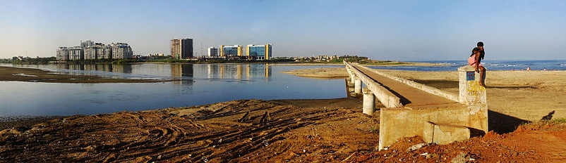 adyar estuary