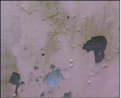 MPI Peeling Paint
