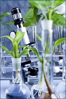 green chemistry technologies