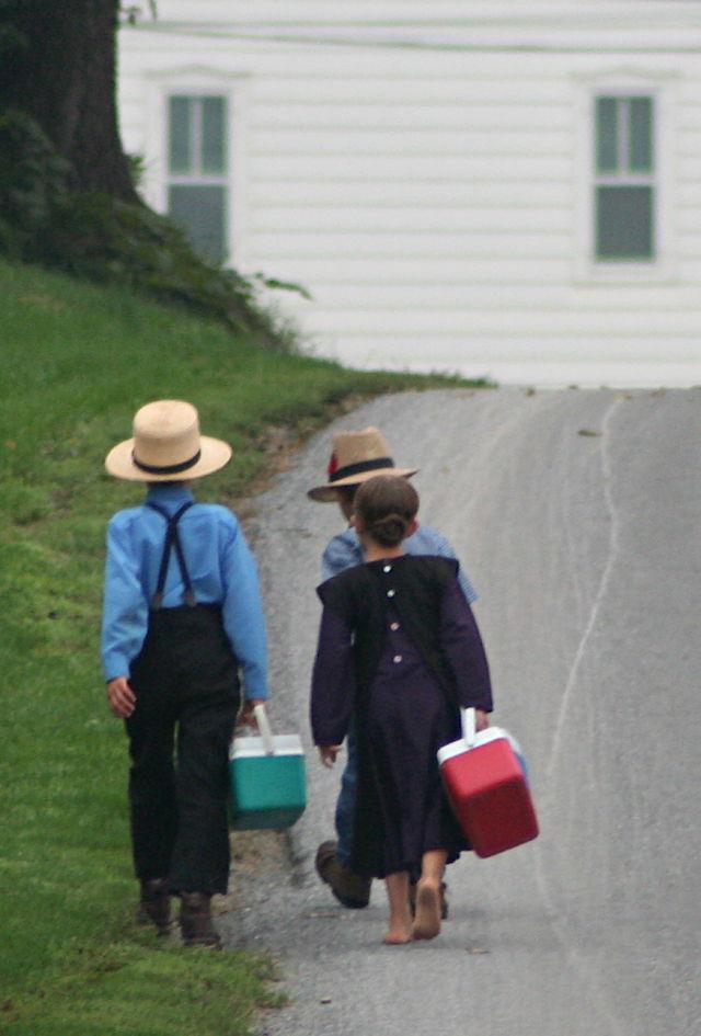 AmishChildren