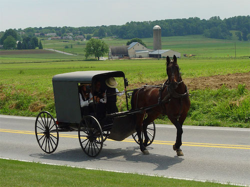 Amish mining