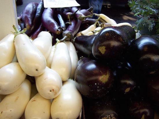 PPG eggplant coatings