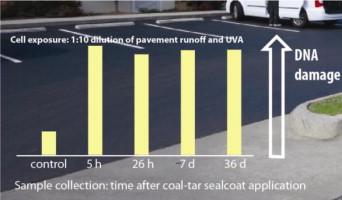 CoalTarSealantToxicity