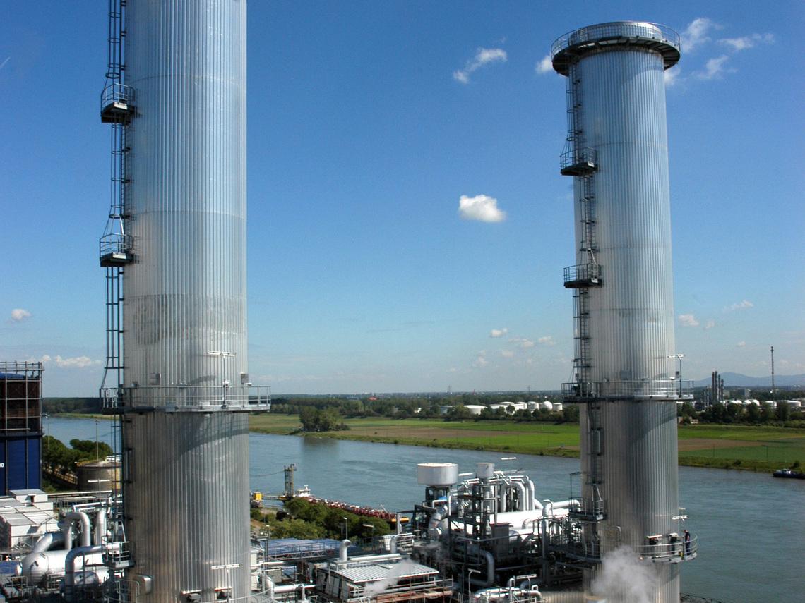 BASF plants