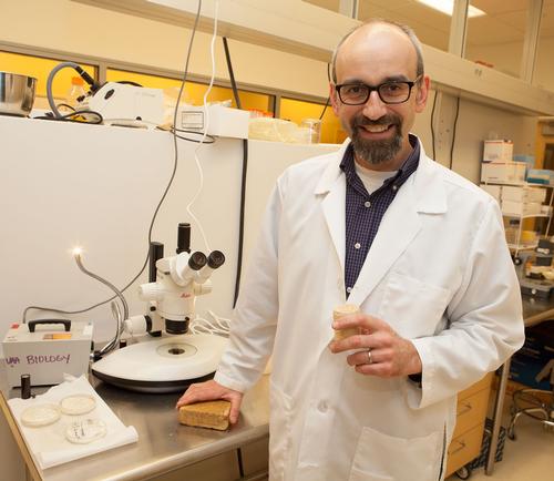 Professor Phillipe Amstislavski