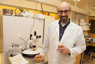 Fungus Could Keep Out the Cold