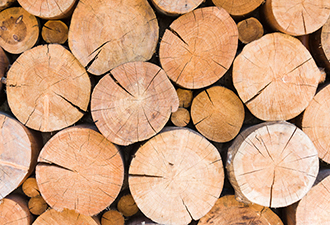 Bill Aims to Spur Wood Building Boom