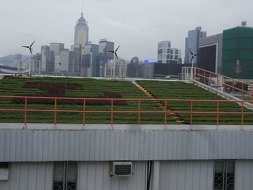A green roof in Hong Kong