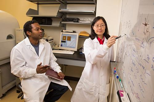Beckford, Zou, U of A lab