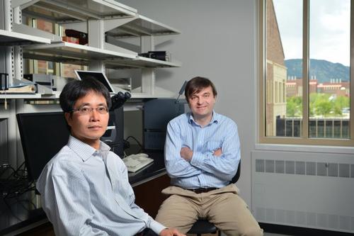 Professors Ronggui Yang and Ivan Smalyukh