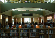 Library Seeks Bids to Turn a New Leaf
