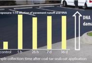 U.S.: Sealant Runoff Kills Aquatic Life