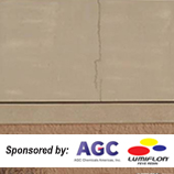 Aesthetics Issues & Related Tests ; Sponsored by AGC Chemicals - Lumiflon