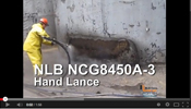 NLB Corporation